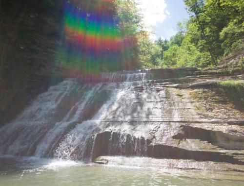 Stoney Brook State Park, Dansville NY